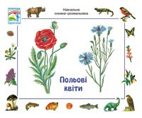 Полевые цветы  Учебная книжка раскраска