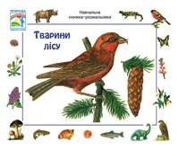 Животные леса  Учебная книжка раскраска
