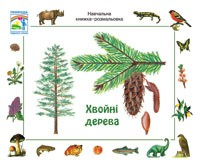Хвойные деревья  Учебная книжка раскраска