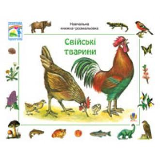 Домашние животные  Учебная книжка раскраска